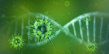 Nature: Científicos rechazan la posibilidad de que el Coronavirus haya sido originado en laboratorio