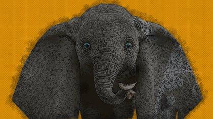 Dumbo: el frío trámite del showbusiness
