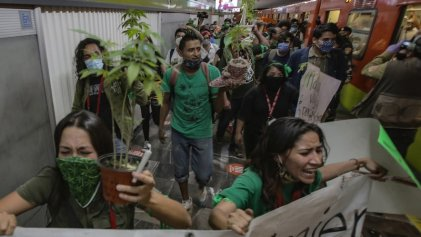 Criminalización del consumo en México: movimiento cannábico rechazó operativos con perros