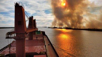 Delta del Paraná en PBA: se decretó la emergencia ambiental solo por 180 días