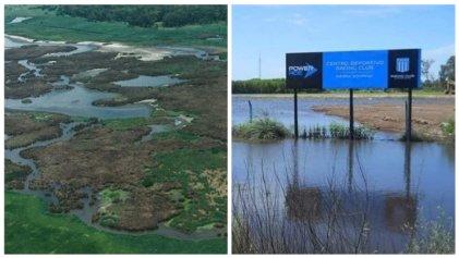 Laguna de Rocha: el Gobierno entrega el humedal en medio de la crisis climática