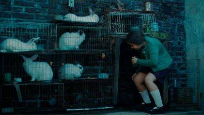 La casa de los conejos: resistencia y dictadura en una mirada desde la infancia