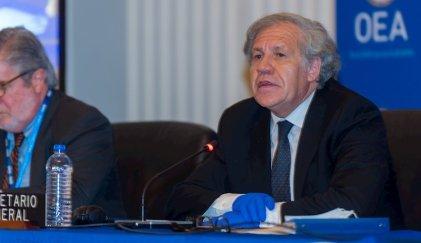 El golpista Luis Almagro reelegido al frente de la OEA