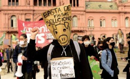 ¡No a las granjas porcinas!: nueva movilización a la embajada china contra el acuerdo